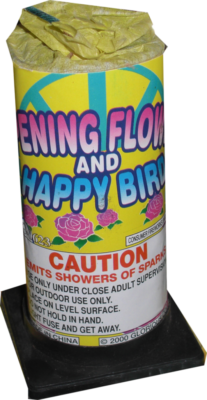 Fountain Opening Flower Happy Bird